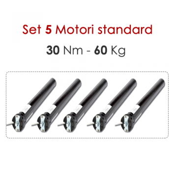 Set 5 Motori tapparelle - 30 Nm | 60 Kg