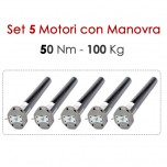 Set 5 Motori con Manovra 50 Nm | 100 Kg