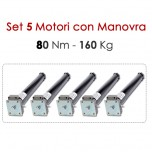 Set 5 Motori con Manovra - 80 Nm | 160 Kg