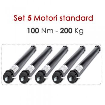 Motori tapparelle-100 Nm/200 kg