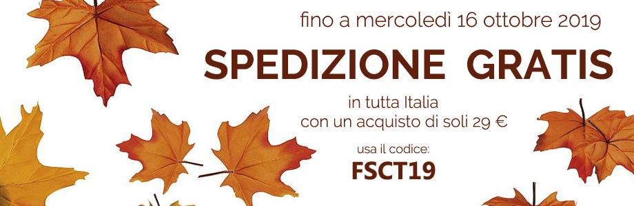 FSCT19