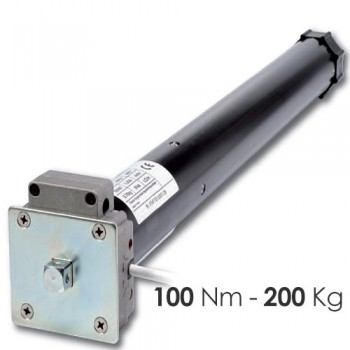 Motore con manovra - 100 Nm | 200 Kg