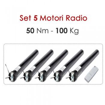 Set 5 Motori Radio - 50 Nm | 100 Kg